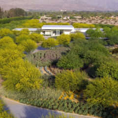 Sunnylands Takes Major New Steps to Reduce Water Consumption